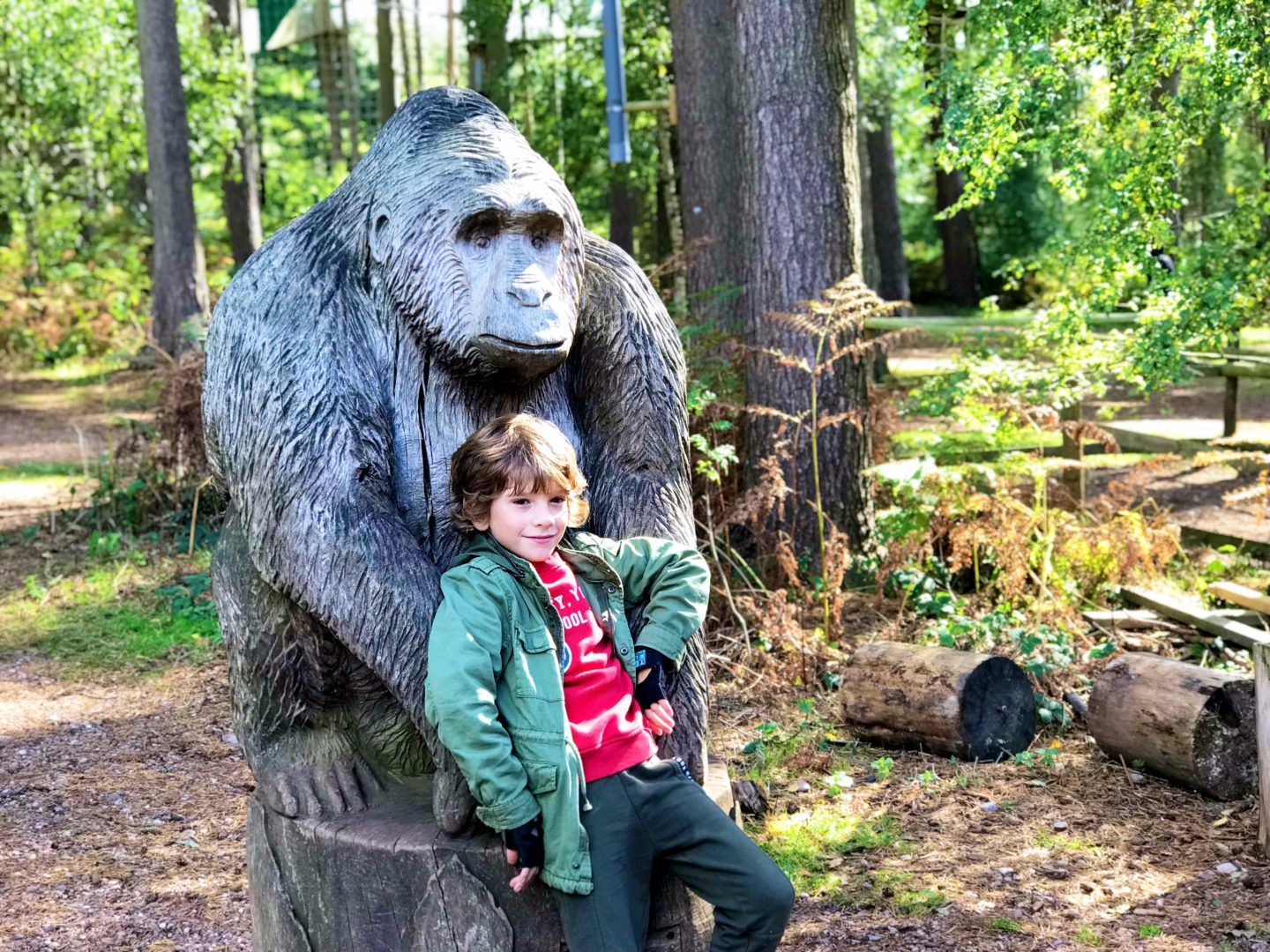 A tree top adventure with Go Ape, Cannock