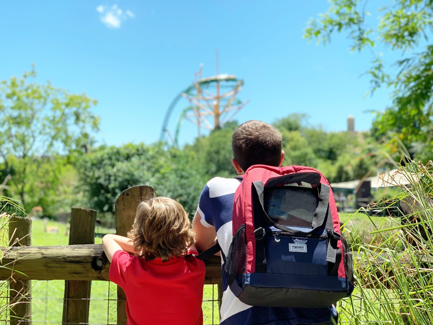 What to pack for a trip to the Florida theme parks