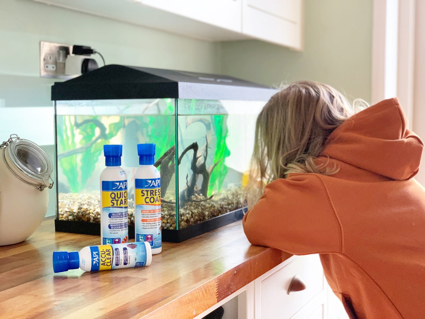 5 tips for setting up an Aquarium with kids
